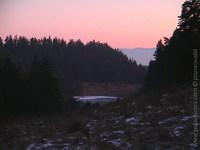 nase lesy